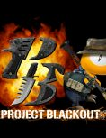 Box art - Project Blackout