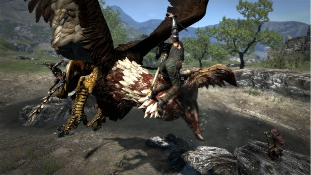 file_2637_dragons-dogma_005