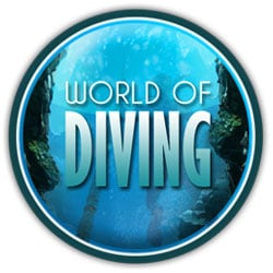 Box art - World of Diving