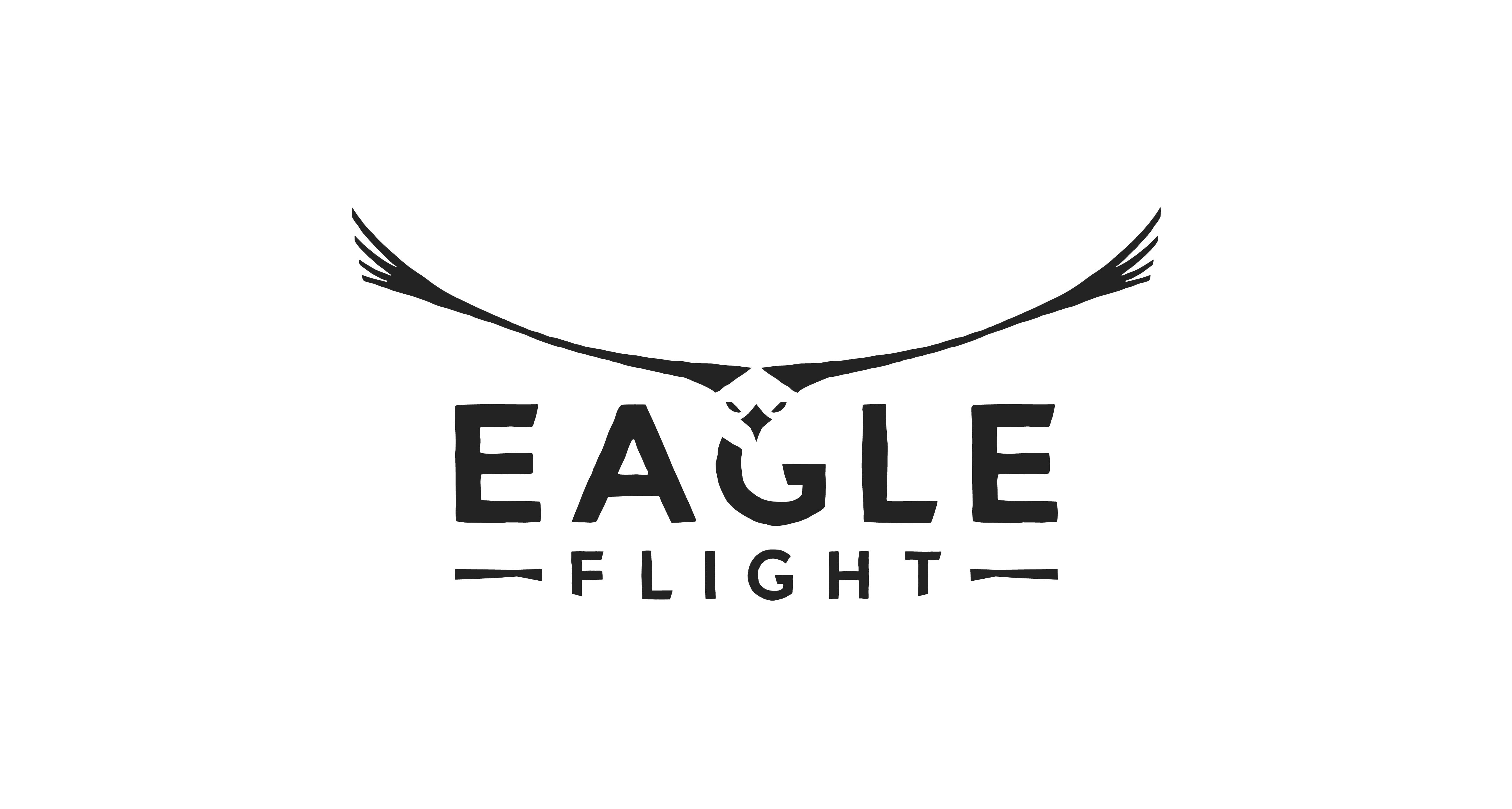 Box art - Eagle Flight