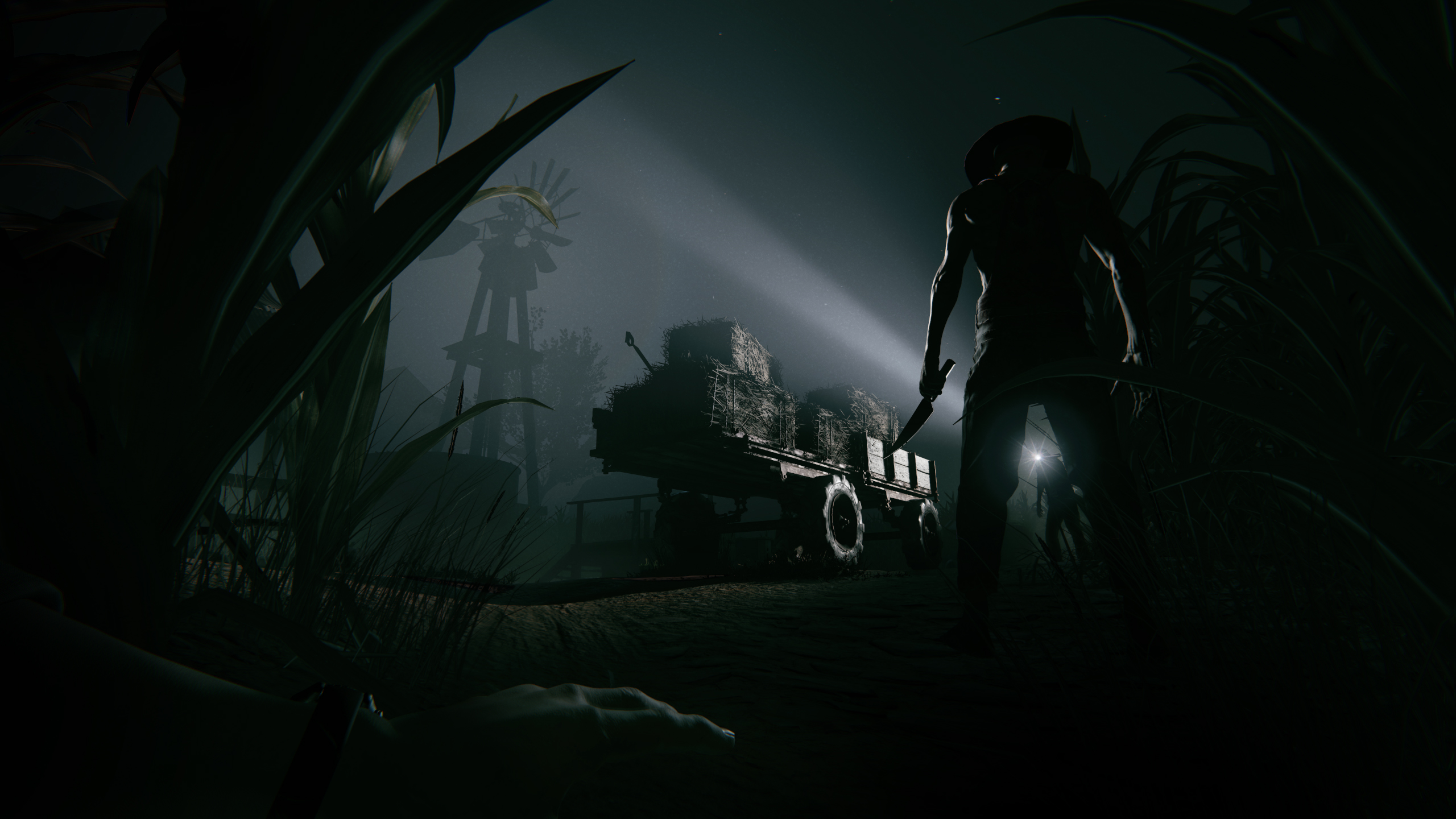 file_70487_Outlast2_WindMill1
