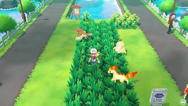 Pokemon Let's Go gameplay