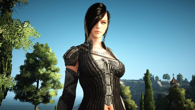 Black Desert Online free open beta now available on PS4