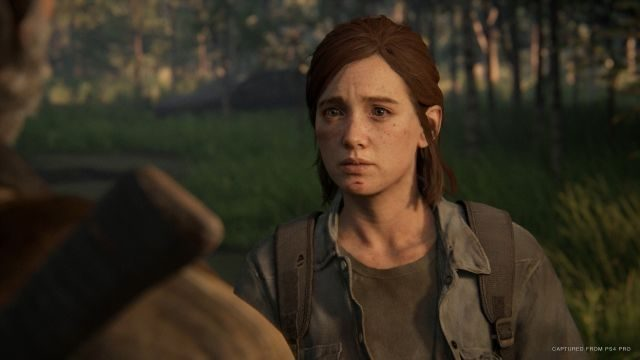 Will The Last of Us 2 have DLC?